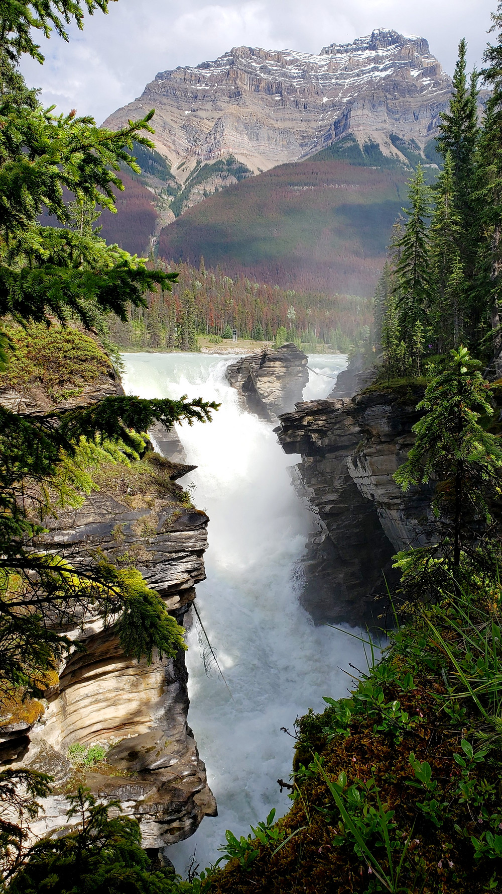 The best of the Canadian Rockies, Athabasca falls,