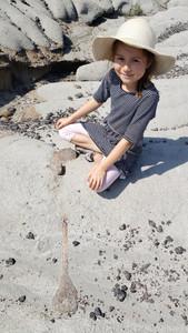 Fossil Safari with kids at Dinosaur Provincial park