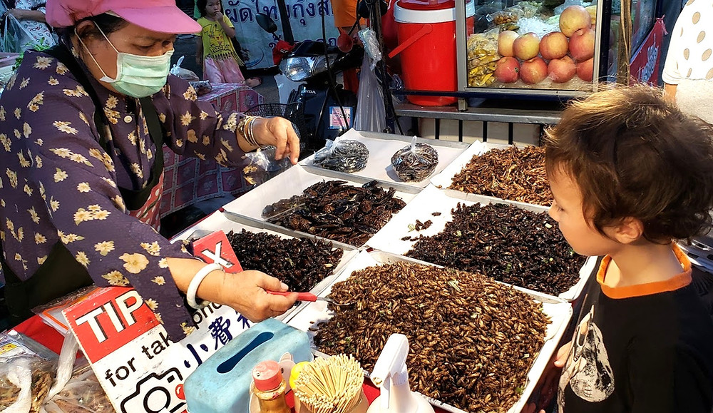 Kid eating bugs at the night market in Chiang Mai, Thailand