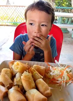 Kid friendly Thai spring rolls