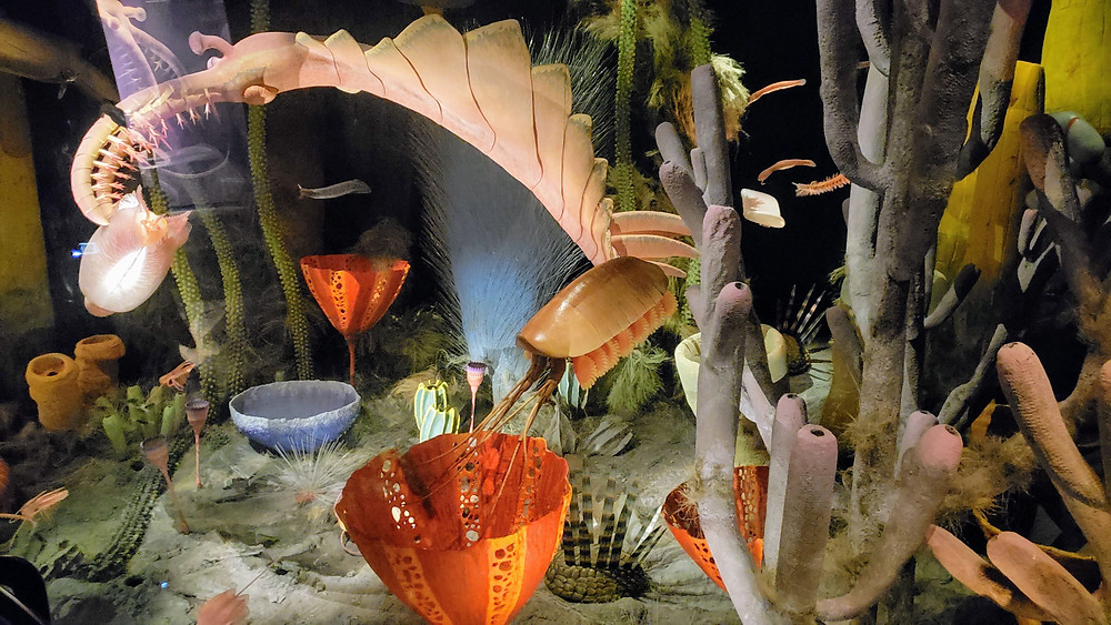Prehistoric display at the amazing Royal Tyrrell Museum