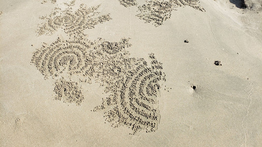 Sand bubbler crab designs on Koh Lanta, Thailand