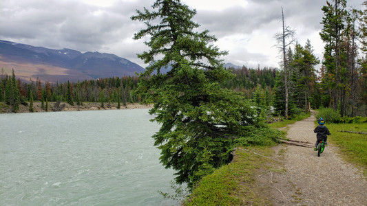 Kids camping and  bike riding in Banff National Park