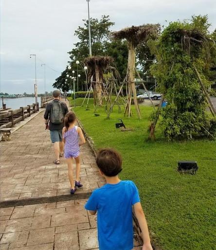 Riverside walkway in Krabi town, Thailand with upside down trees