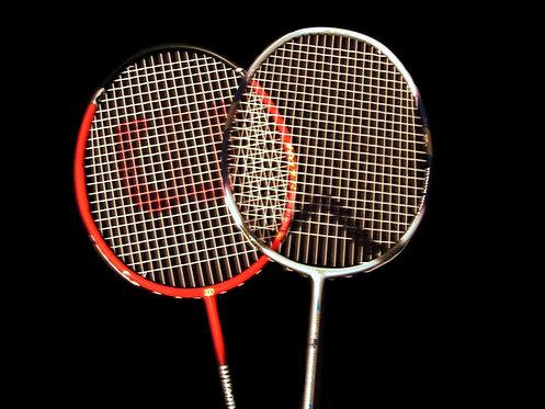Badminton (adultes)
