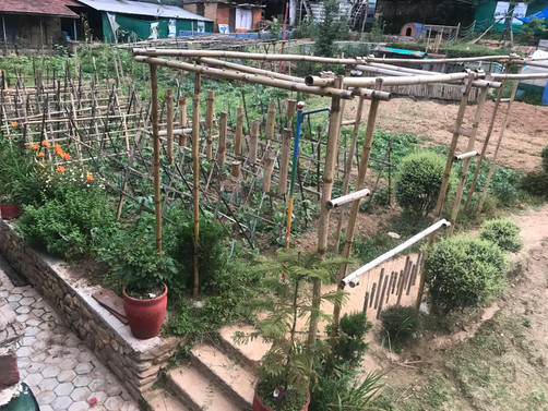 KRMEF Garden.jpg