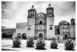 Templo De Santo Domingo, Oaxaca.