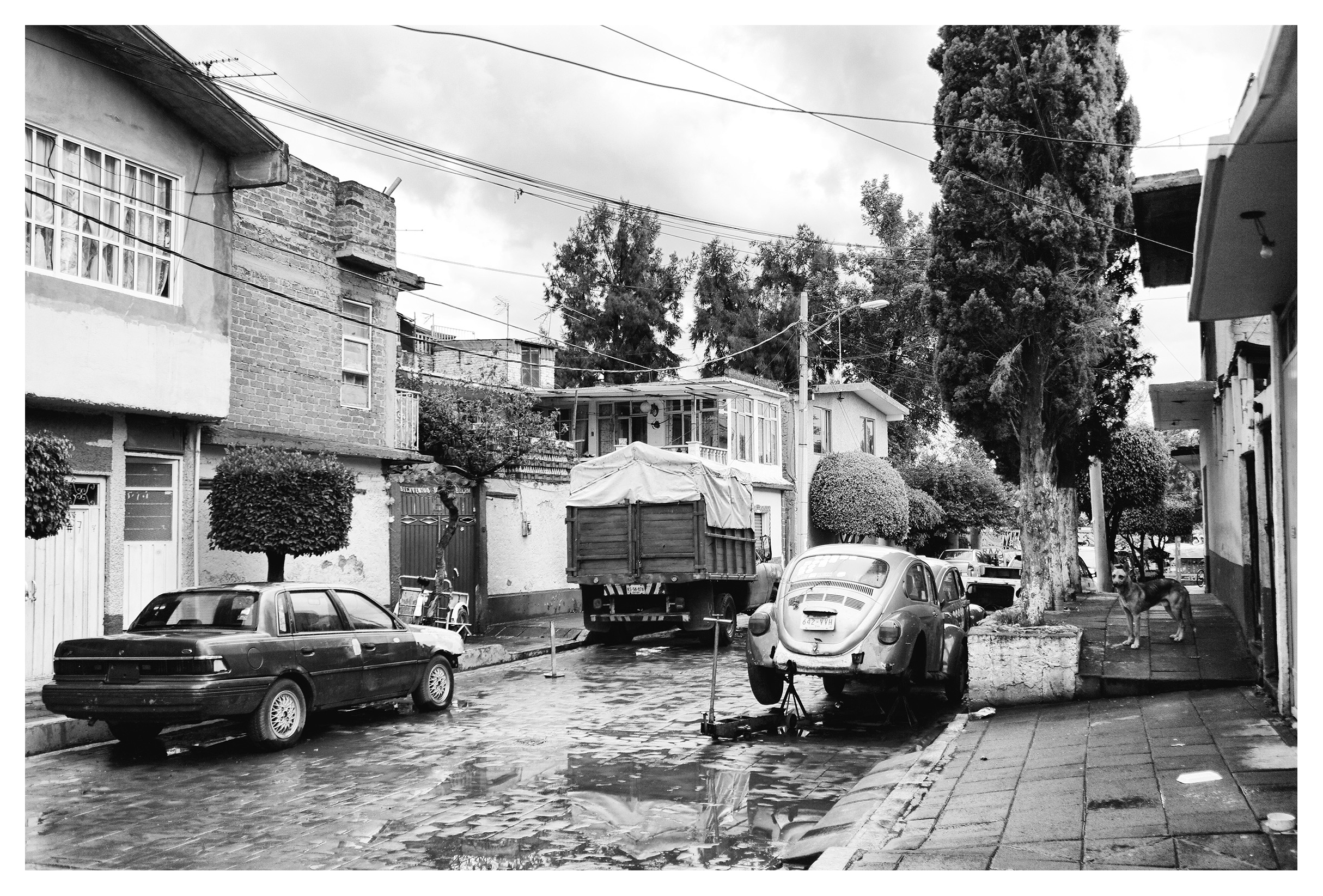 Xochimilco (4)