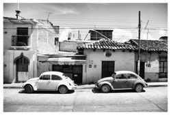 Coccs San Cristobal de la Casa