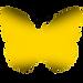 mon papillon préféré jaune (2).png