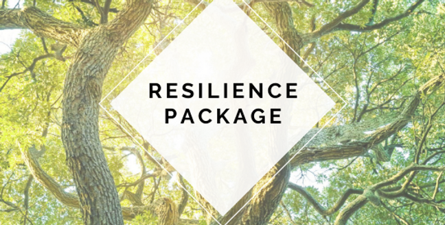 Resilience Package of 6 Sessions