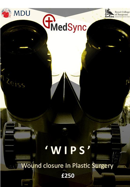 WIPS%20advert_edited.jpg
