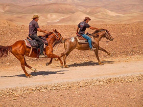 Sirin Riders – Horseback Riding Vacations in Israel