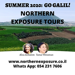 Northern Exposure Tours.png