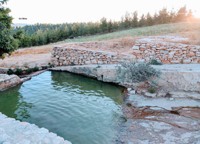 Natural Springs in the Gush Etzion Area