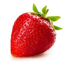 Meshek Yosef Strawberry Picking