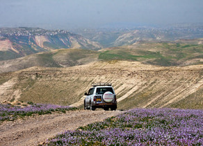 The Hidden Valley Jeep Tours – On & Off the Beaten Track
