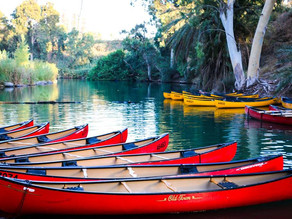 Rob Roy Kayaks (Indiani)