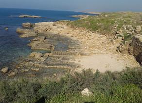 Memorable Modular Tours from Hadera to Haifa!