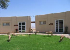 Har HaNegev Field School – Mitzpe Ramon
