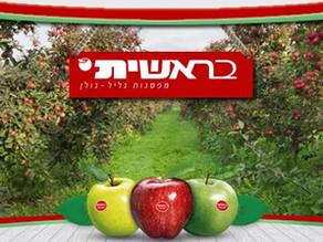 Beresheet Apple Factory