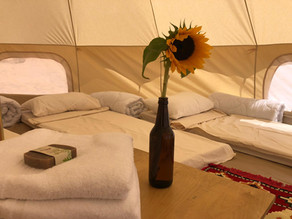 Desert Adventure - Glamping in the Desert