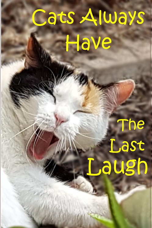 Cats always have the last Laugh Magnet
