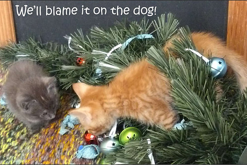 We'll blame it on the dog! Magnet