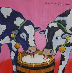 Kühe trinken Milch