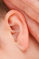 Ohren: Wir hören was Leute sagen.