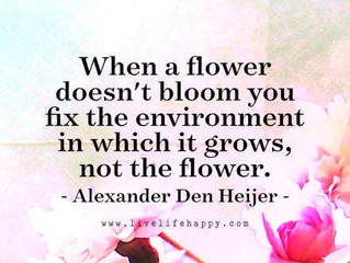 Does Your Environment Need Fixing