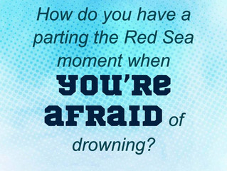 Red Sea Moments