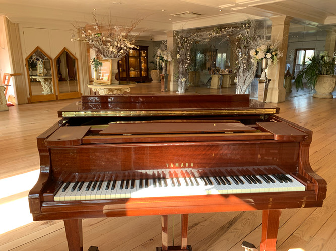 Wedding_Pianist_Stockbrook_Park.jpg