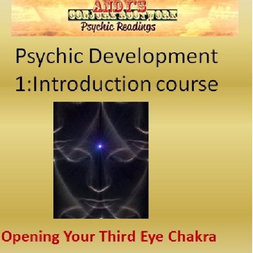 Psychic Development Course I