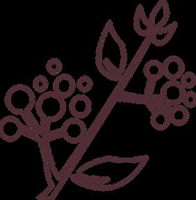 ramo out-plum.png