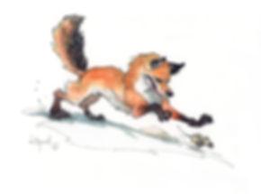 fox300.jpg