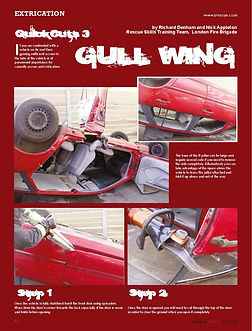 gull wing extrication-  car on roof