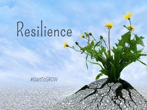 Τι σημαίνει η έννοια της Ανθεκτικότητας (Resilience) και γιατί είναι σημαντική στη ζωή μας;