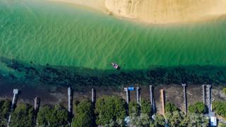 Mossy jetties
