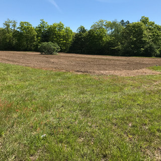 Field Before Planting