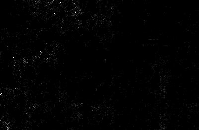 Noir et blanc Résumé Texture