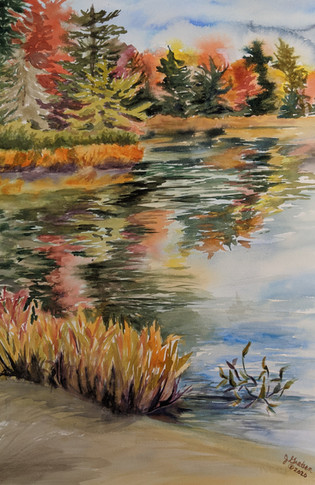 Old Forge Pond Reflections