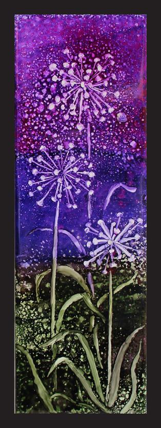 Sparkling Alliums 2