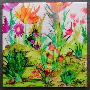 Snails Garden