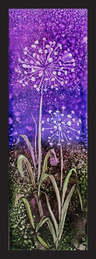 Sparkling Alliums 1