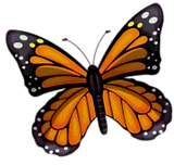 sunflower-haven-logo-A_edited.png