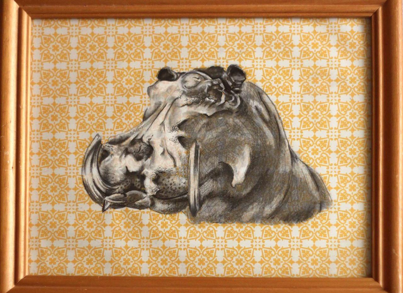 saris+hippo.jpg
