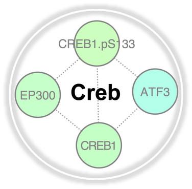 Creb.jpg