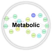 Metabolic.jpg