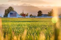 Prairie_Farm.jpg